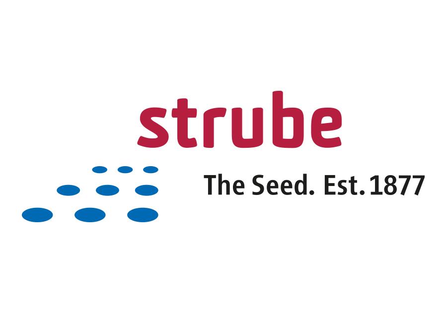 Strube