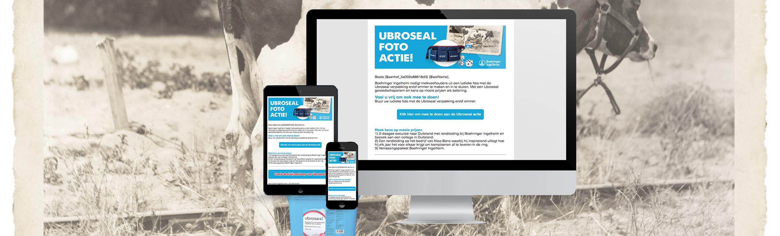 portfolio-boehringer-ingelheim-urboseal-nieuwsbrief