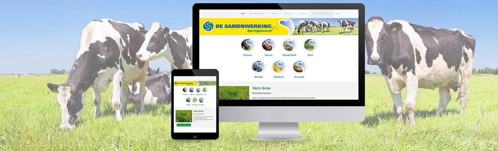 portfolio-de-samenwerking-website