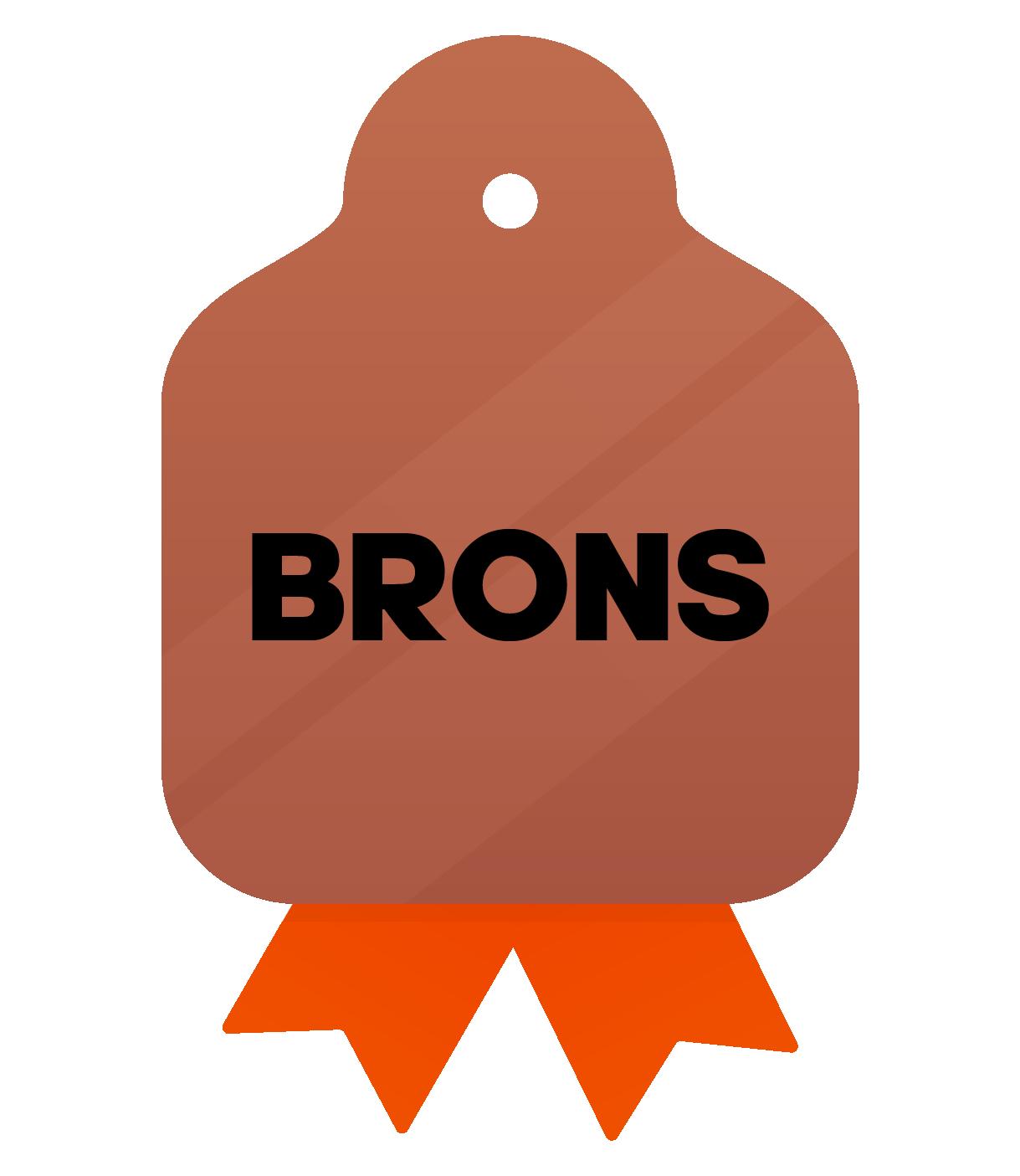 Communicatiepakket_Icoon_Brons